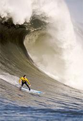 Surfing the Ocean Breath